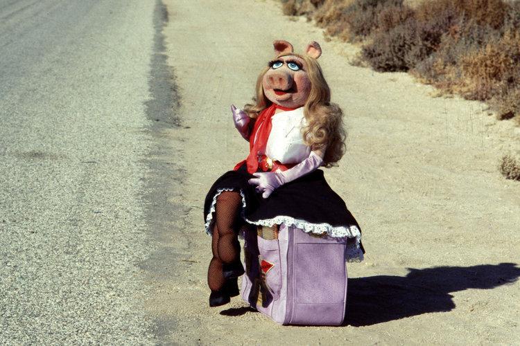 Miss Piggy Puppet Porn - Simple: Miss Piggy.